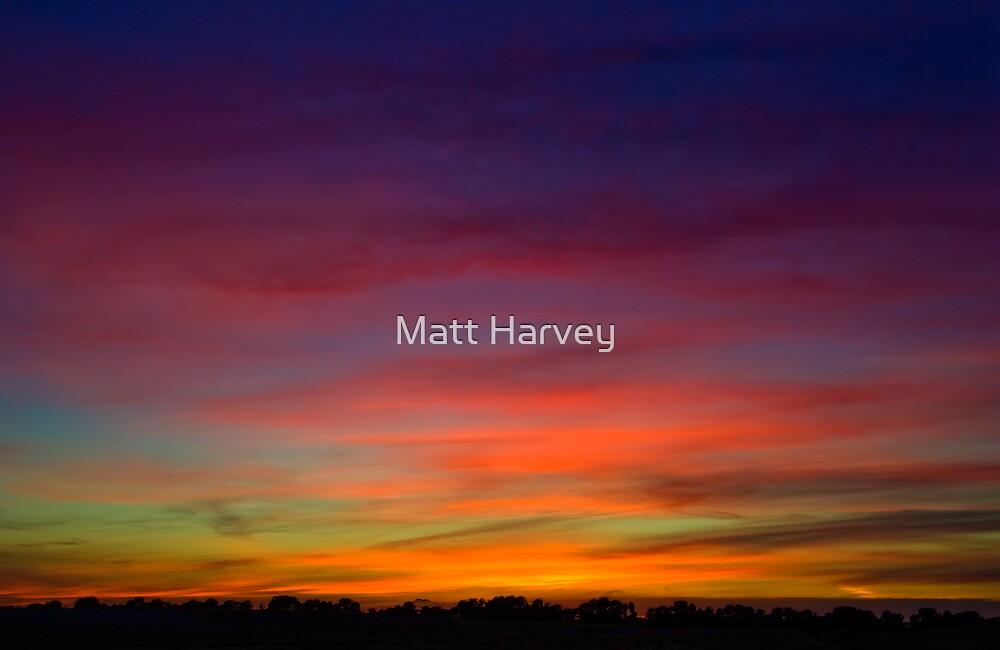 Painted with light by Matt Harvey