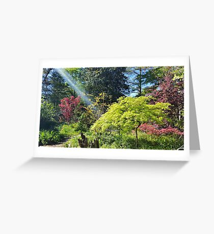 My Father's Garden Greeting Card