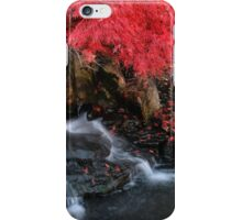 Fall in fall iPhone Case/Skin