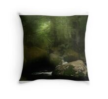 Taggerty River III Throw Pillow