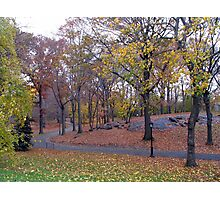 Central Park, New York Photographic Print