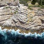 Cliff face, Sydney Harbour by RosemaryO