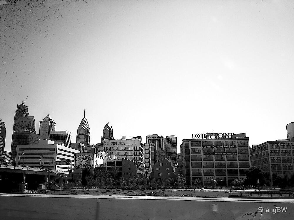 """Passing Pennsylvania"" by ShanyBW"
