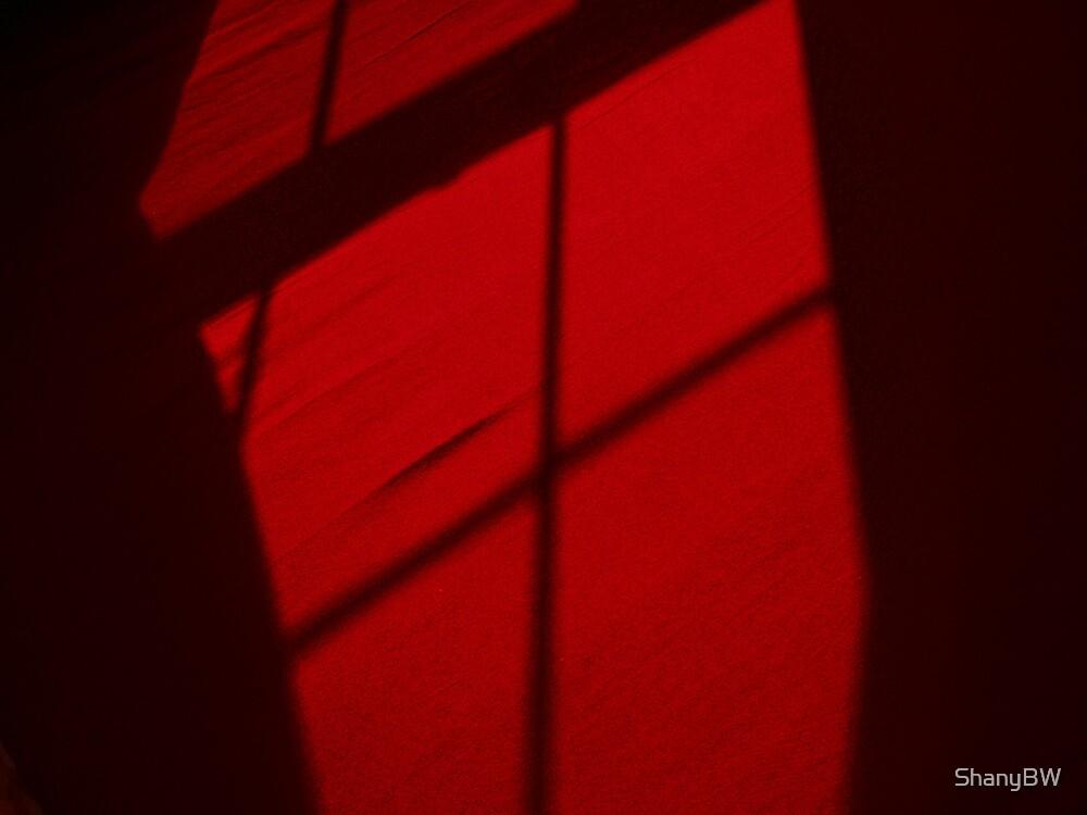 """""""Shadows In Red Velvet"""" by ShanyBW"""