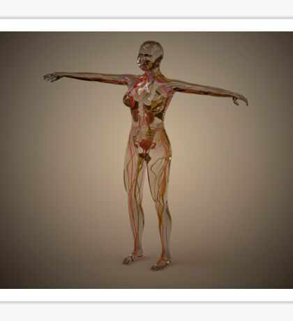 Conceptual image of human nervous system. Sticker