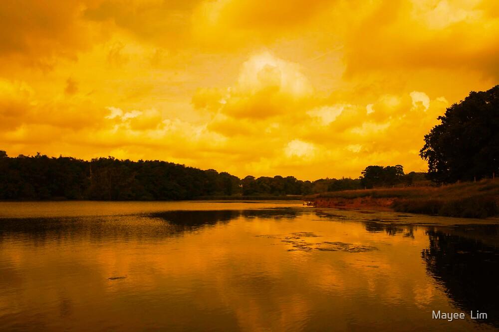 Mandarin skies by Mayee  Lim