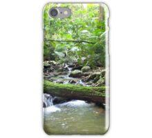 Rainforest Green iPhone Case/Skin