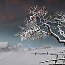 Red Apples by Igor Zenin