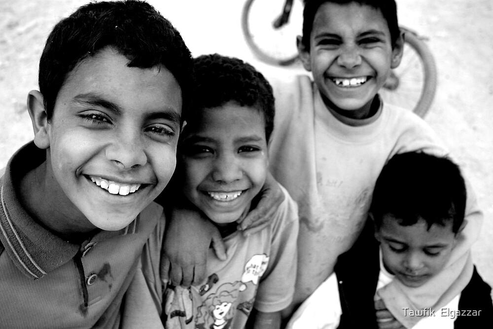 Life is Fun! by Tawfik  Elgazzar