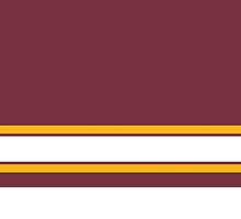 Washington Redskins Color Design by canossagraphics