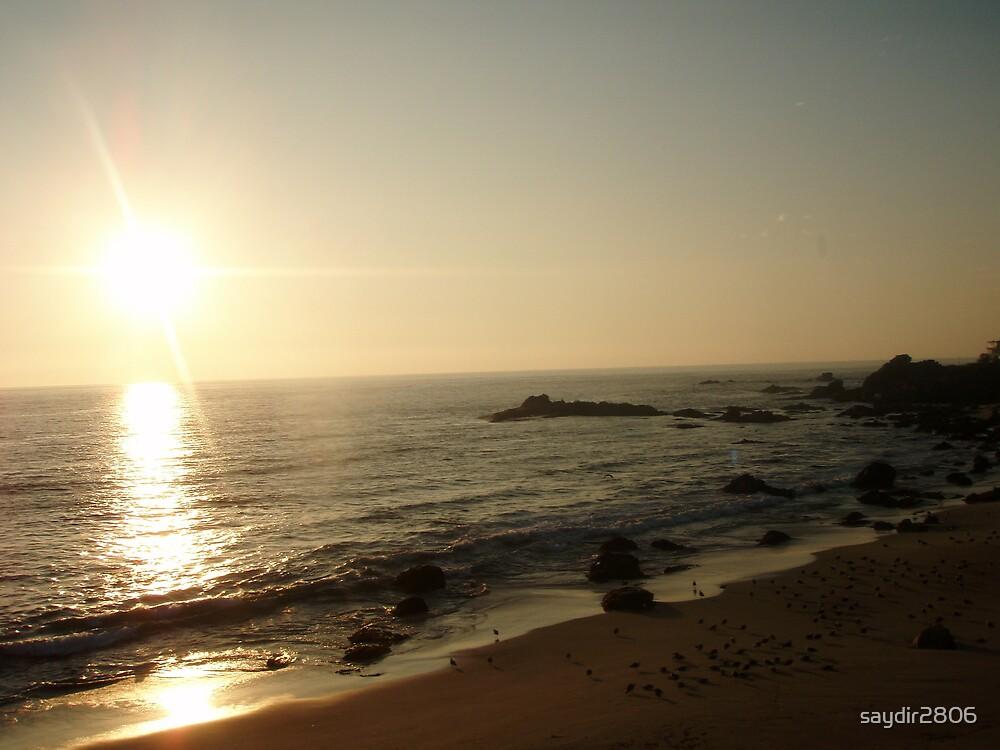 Sandy Sunset  by saydir2806