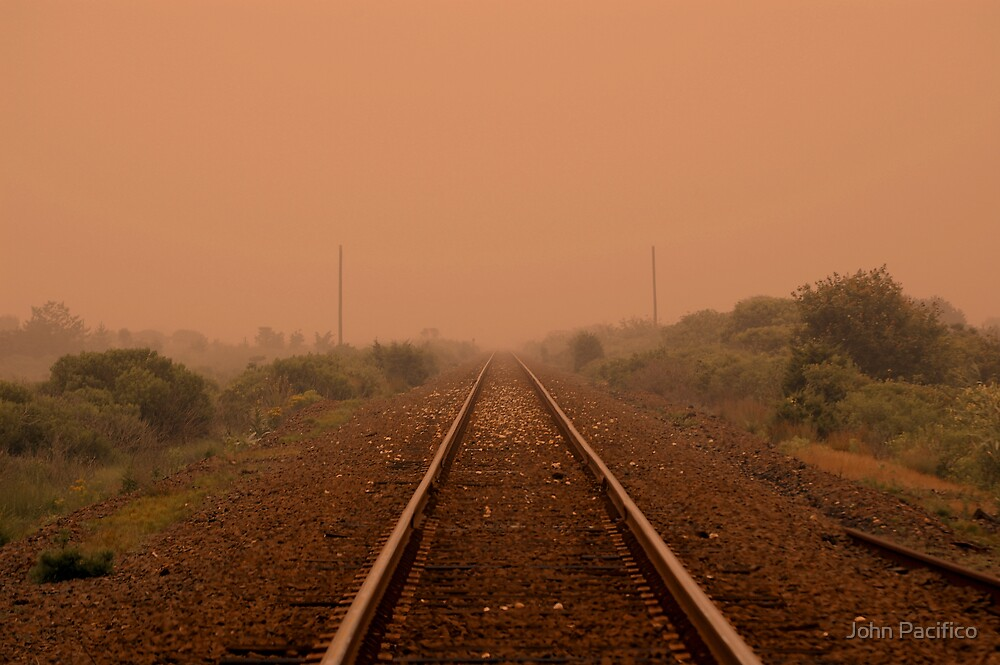 The Tracks by John Pacifico