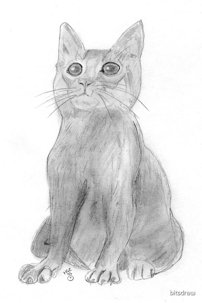 Upright Ccat by bitsdraw