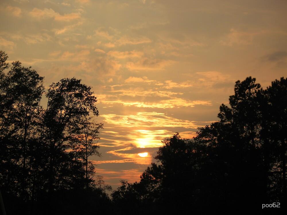 Golden Skies by poo62
