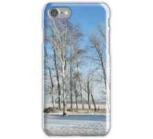 Shelter Belt in Winter iPhone Case/Skin