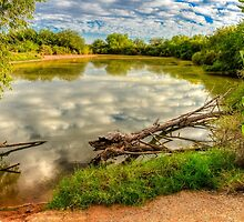 Peaceful Pond-1 by George Lenz