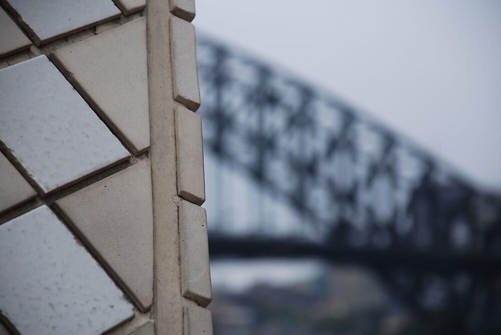 Opera House & Bridge by Chris  O'Mara
