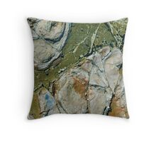 Rockpools 22 Throw Pillow