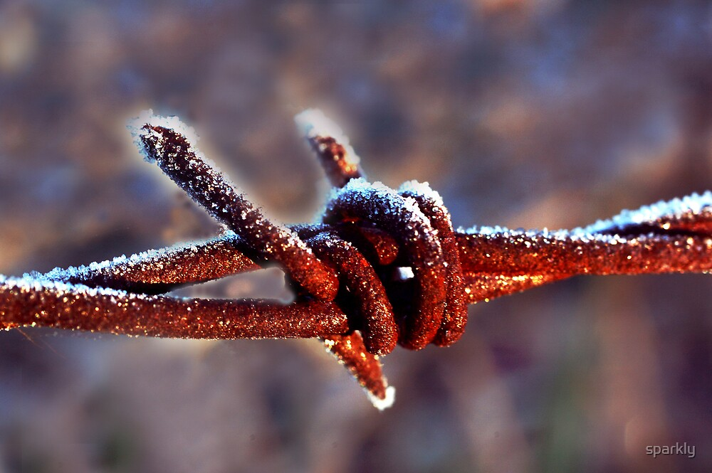 frosty rusty barb wire by sparkly
