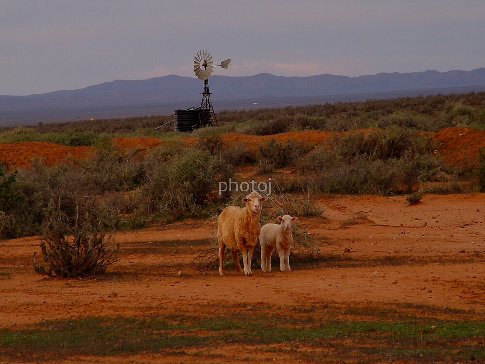 photoj South Australia, Flinders Rangers, outback by photoj