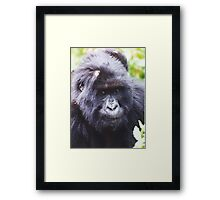 Magestic Mountain Man Framed Print