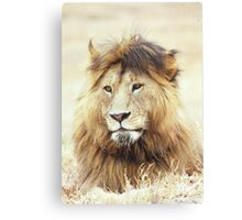 I Know I am Handsome...You Don't need to tell me 2 Canvas Print
