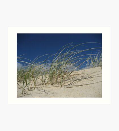 Dune Grass001 Art Print