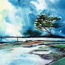 Blue Sky by Anil Nene