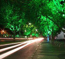 St Kilda Road by Gavan  Mitchell