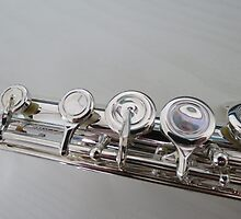 Silver Flute Left Hand Keys by BlueMoonRose