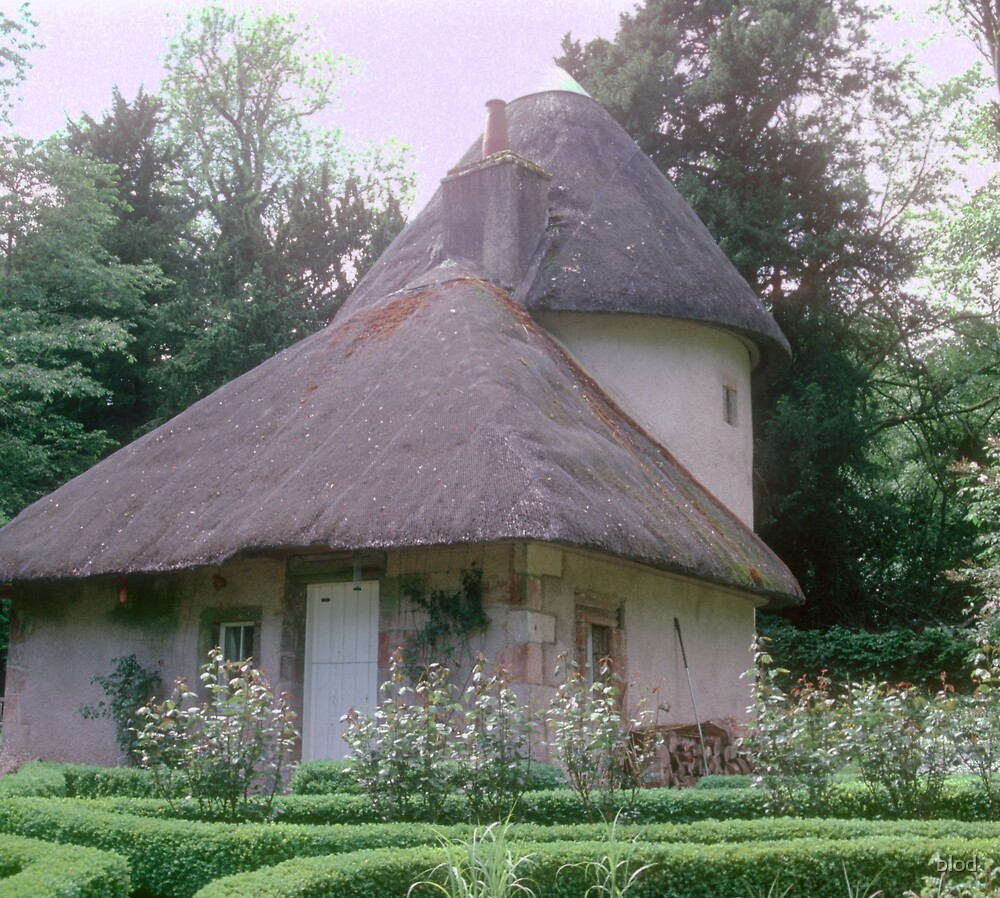 Country Cottage by blod
