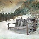Sanctuary in White by Susan Werby