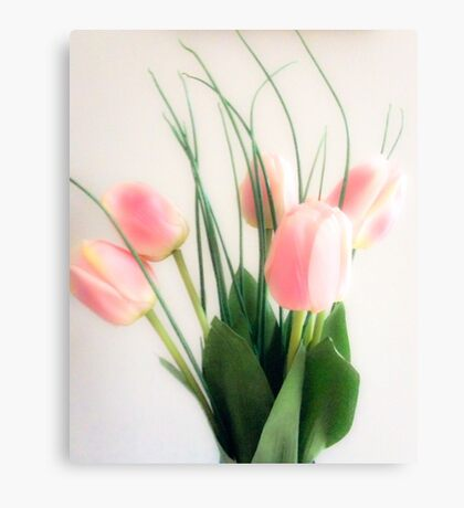 Spring pink tulips Canvas Print