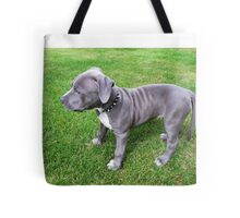Gorgeous Baby, Blue Pit Bull Puppy Dog With Wrinkles Tote Bag
