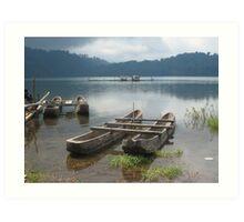 Lake, Bali Art Print