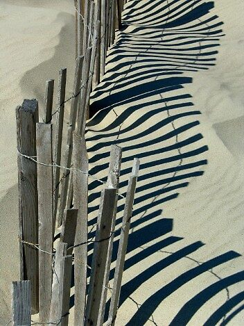 Fence Shadows At Play by Tom Michael Thomas