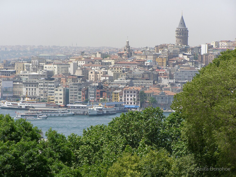 Galata Tower in Istanbul by Anita Donohoe