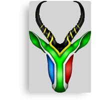 South African Springbok Canvas Print