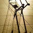 Abandoned shopping cart by Sheila  Smart