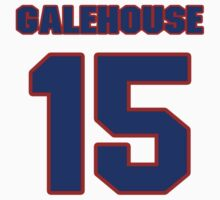 National baseball player Denny Galehouse jersey 15 by imsport