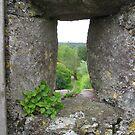 Blarney Castle #2 by Splogy