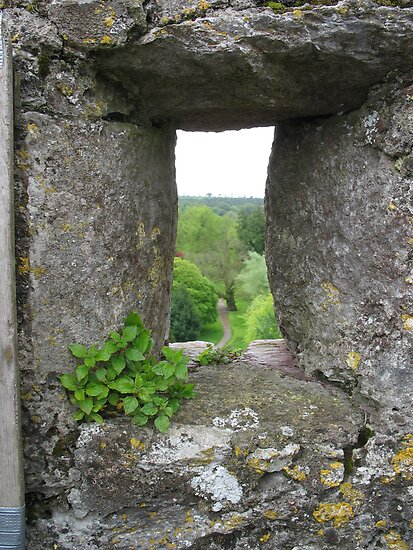 Blarney Castle #2 by Splogy