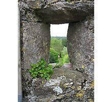 Blarney Castle #2 Photographic Print