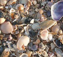 A Small Piece fo the Beach by Victoria Leggatt
