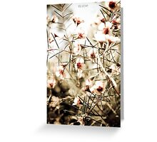 Memories of Spring. Greeting Card
