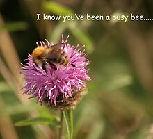 Busy Bee Card by Hazel Moore