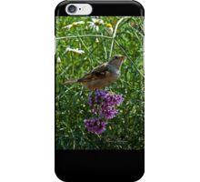 Notre Dame Garden - Cool Stuff iPhone Case/Skin
