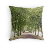 Endless Path Throw Pillow