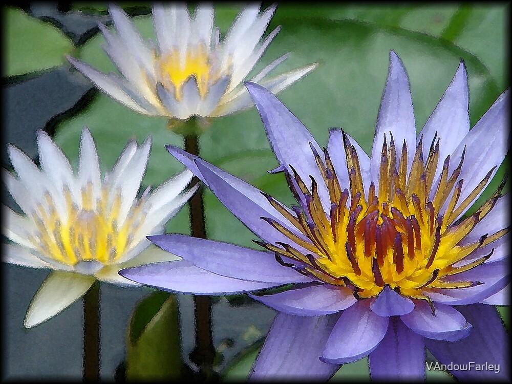water lilies of the south by VAndowFarley