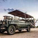 Safari Land Cruiser by Tim Cowley